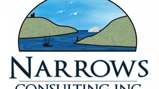Narrows Consulting