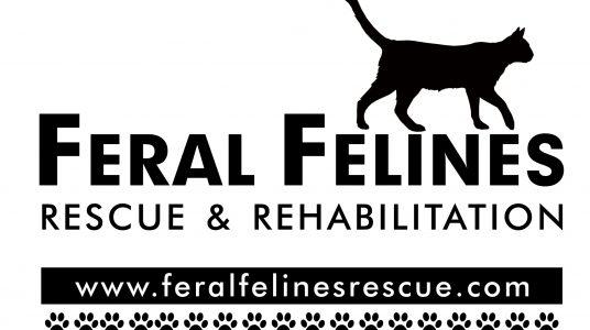 Feral Felines Rescue